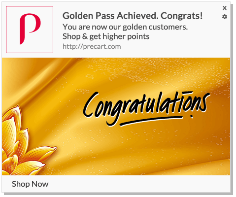 Sense of Success as Golden-Pass for loyal customers using push notifications