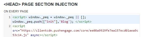 PushEngage code in Header Footer plugin